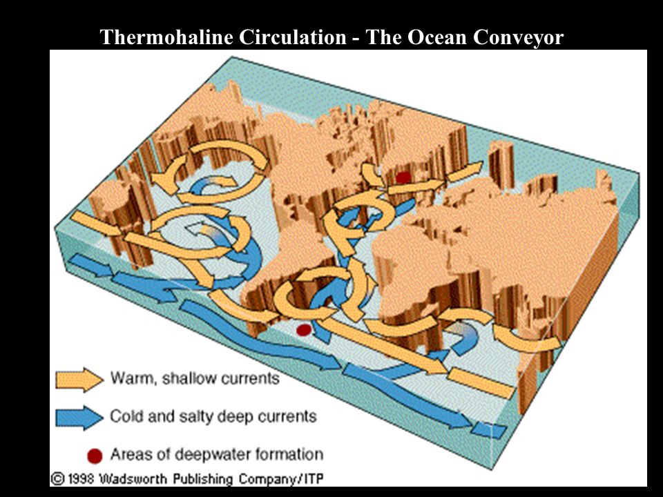 Thermohaline Circulation - The Ocean Conveyor