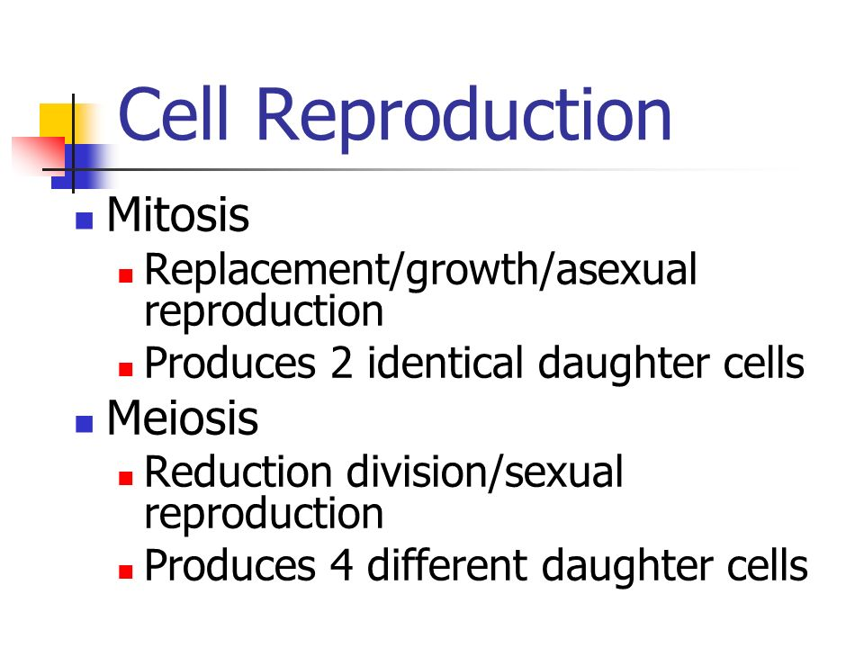 Cell Reproduction Mitosis Replacement/growth/asexual reproduction Produces 2 identical daughter cells Meiosis Reduction division/sexual reproduction Produces 4 different daughter cells