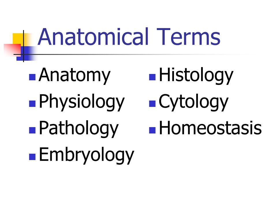 Anatomical Terms Anatomy Physiology Pathology Embryology Histology Cytology Homeostasis