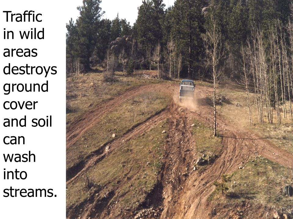 Traffic in wild areas destroys ground cover and soil can wash into streams.