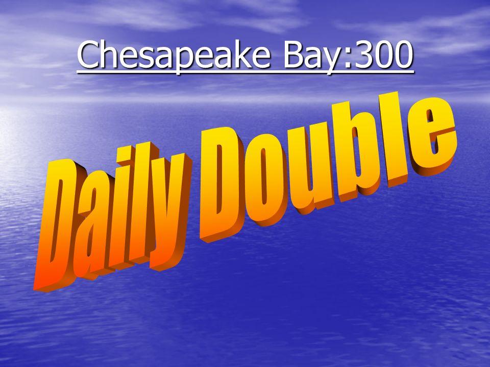 Chesapeake Bay: 200 ______________ water is made when ocean water mixes with fresh water ______________ water is made when ocean water mixes with fresh water Brackish Brackish