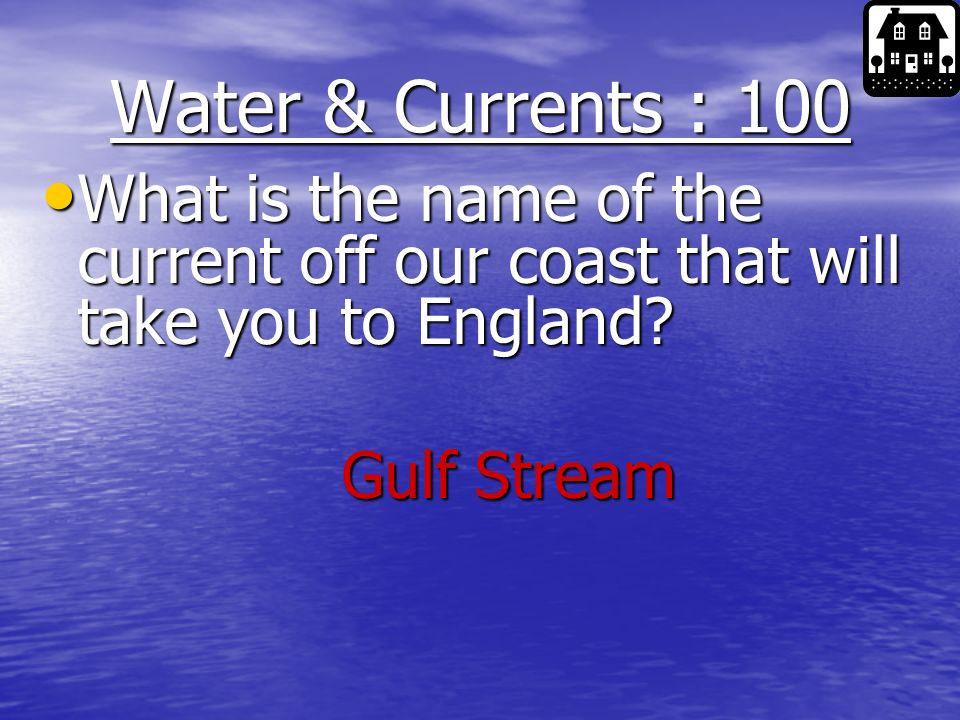 500 400 300 200 100 400 300 200 100 200 Waves 100 200 Chesapeake Bay 100 Salt Marsh Ocean Floor Water & Currents 500 F F