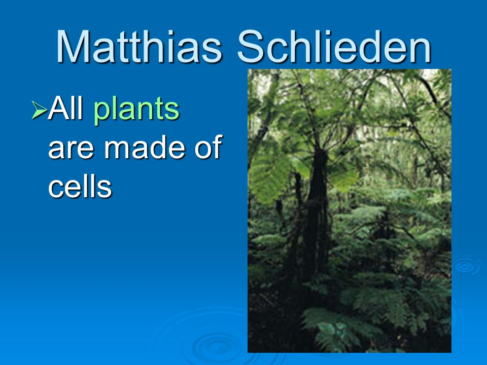 Theodor Schwann All animals are made of cells All animals are made of cells