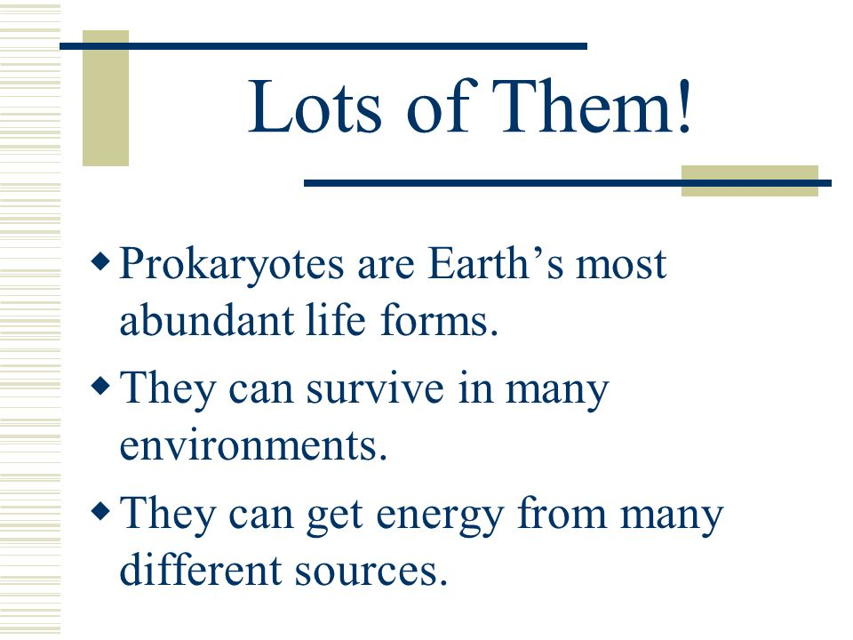 Lots of Them! Prokaryotes are Earths most abundant life forms. They can survive in many environments. They can get energy from many different sources.