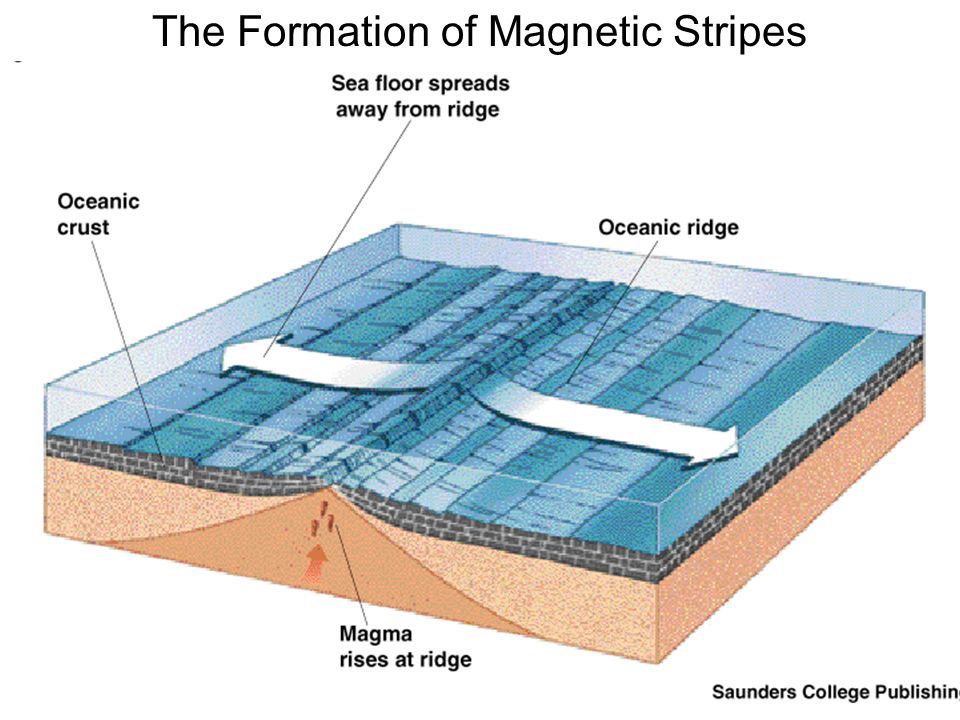 The Formation of Magnetic Stripes