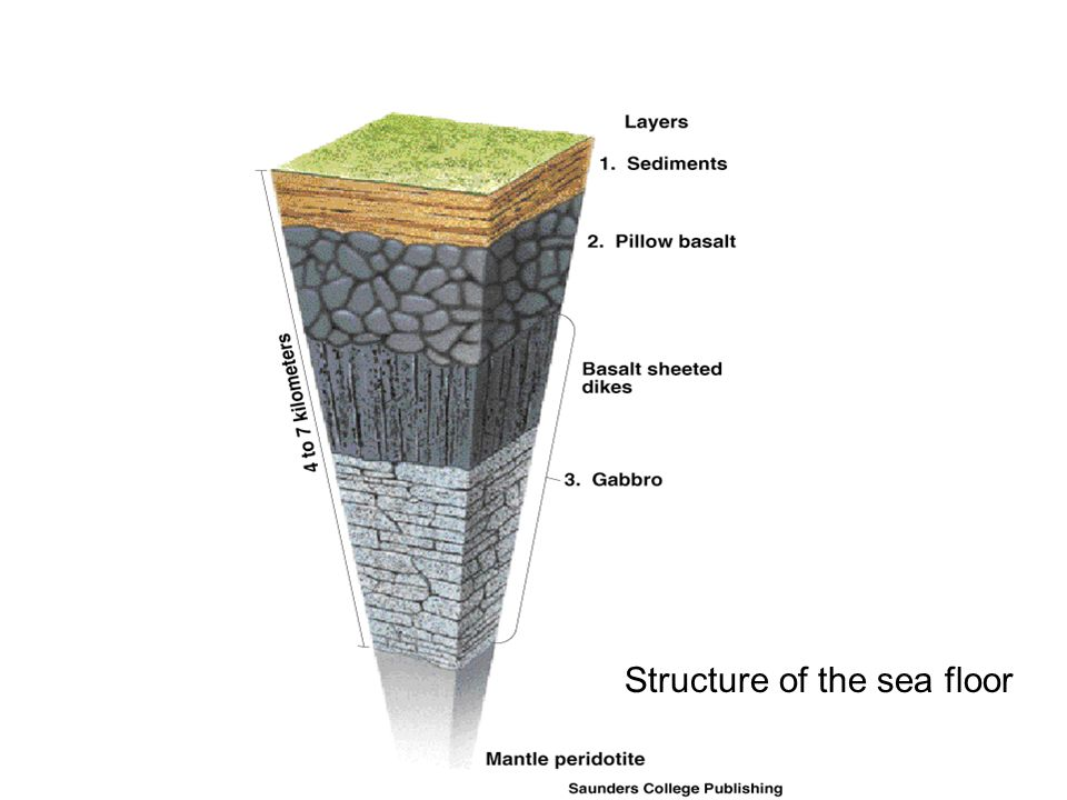 Structure of the sea floor