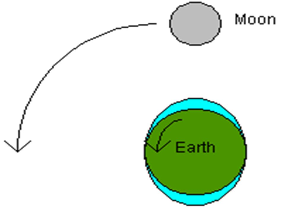 Gravitational Effect of the Moon Two big bulges of water form on the Earth: Two big bulges of water form on the Earth: –one directly under the moon –a