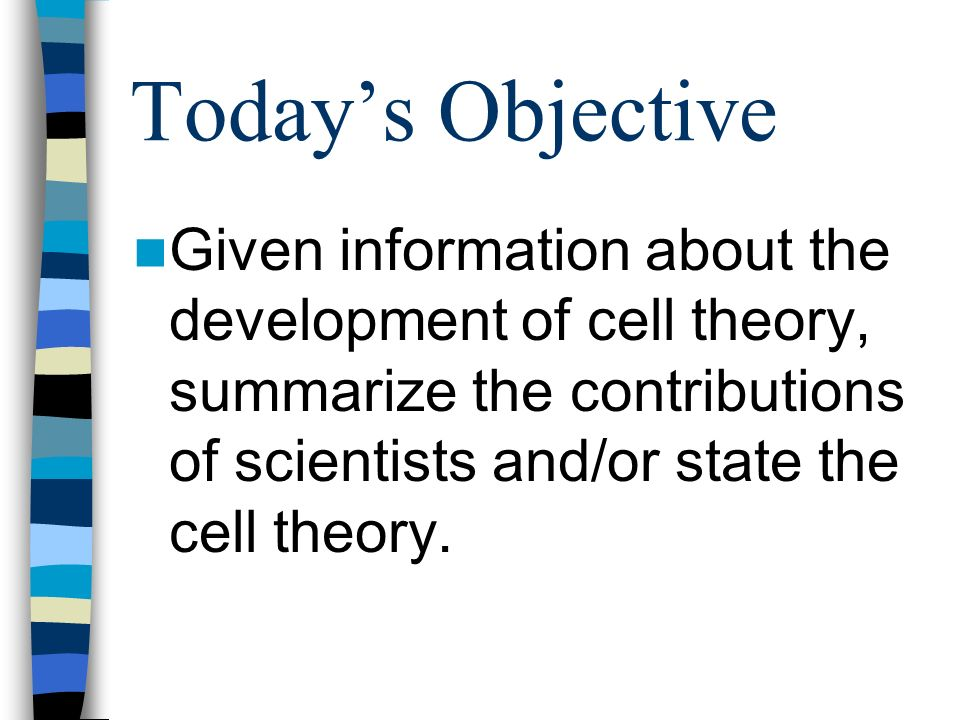 Todays Objective Given information about the development of cell theory, summarize the contributions of scientists and/or state the cell theory.