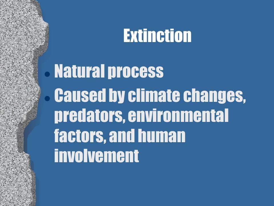 What is extinction? l When a species no longer exists