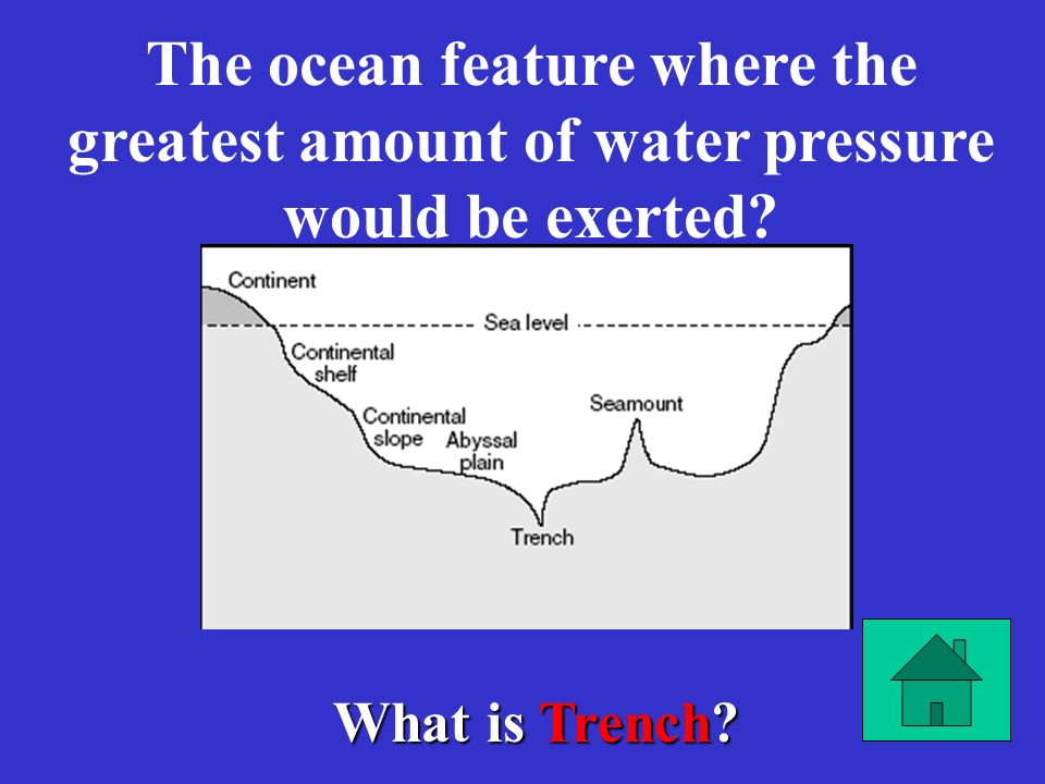 What is D? It was primarily responsible for the development of life outside of the oceans. A) A)Decrease in atmospheric hydrogen B) B)A decrease in at