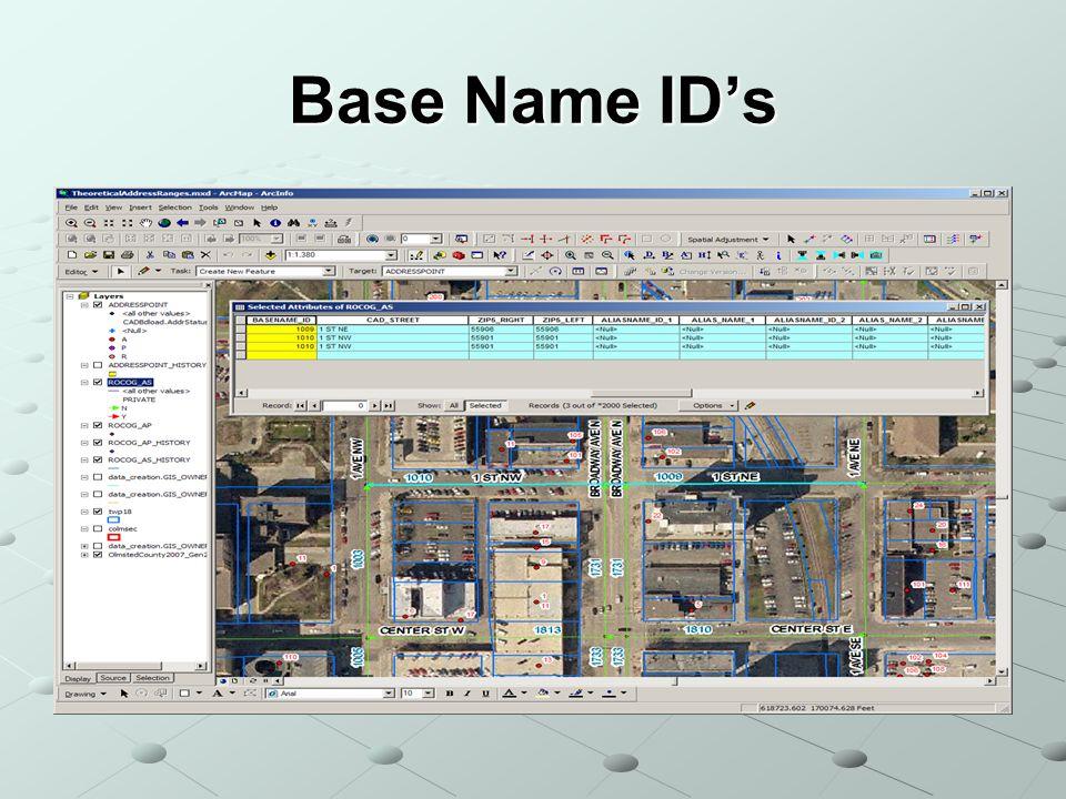 Base Name IDs