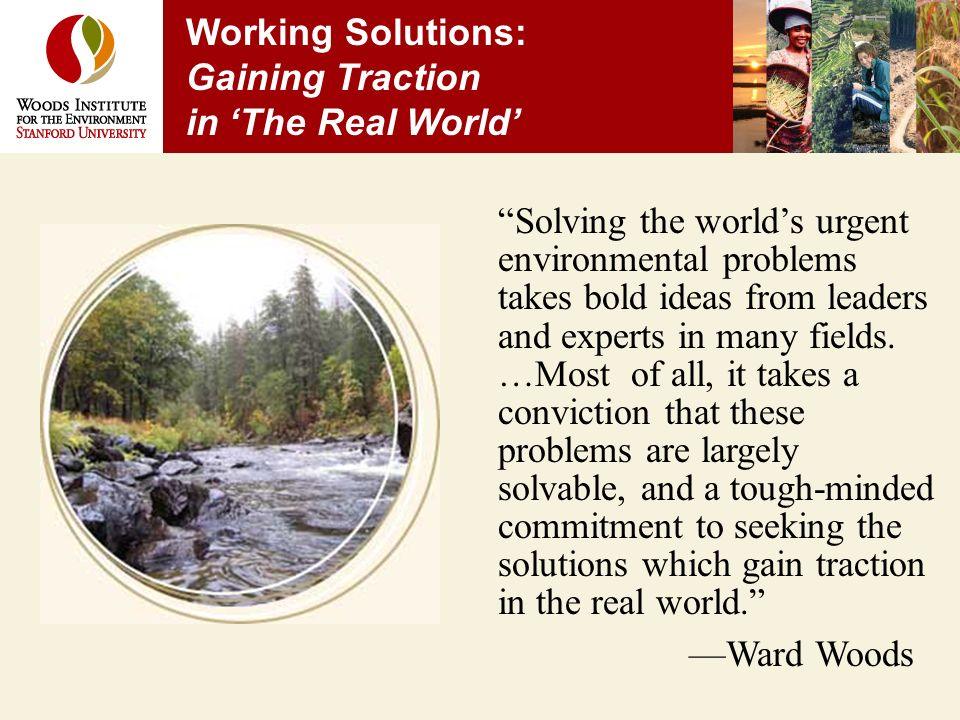 Working Solutions: Gaining Traction in The Real World Solving the worlds urgent environmental problems takes bold ideas from leaders and experts in many fields.