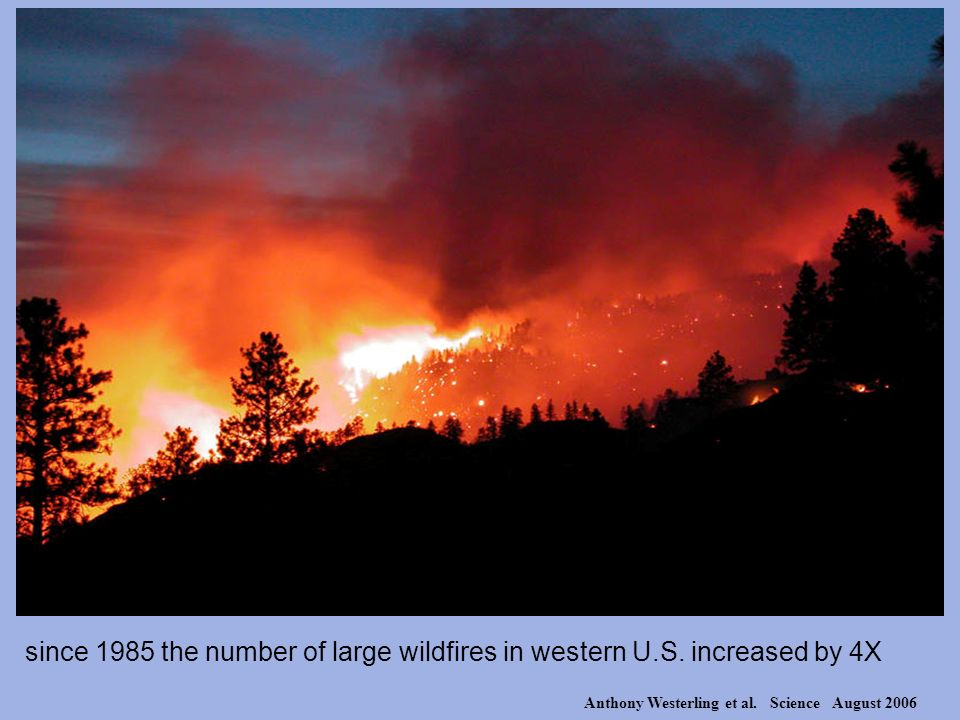 since 1985 the number of large wildfires in western U.S. increased by 4X Anthony Westerling et al. Science August 2006