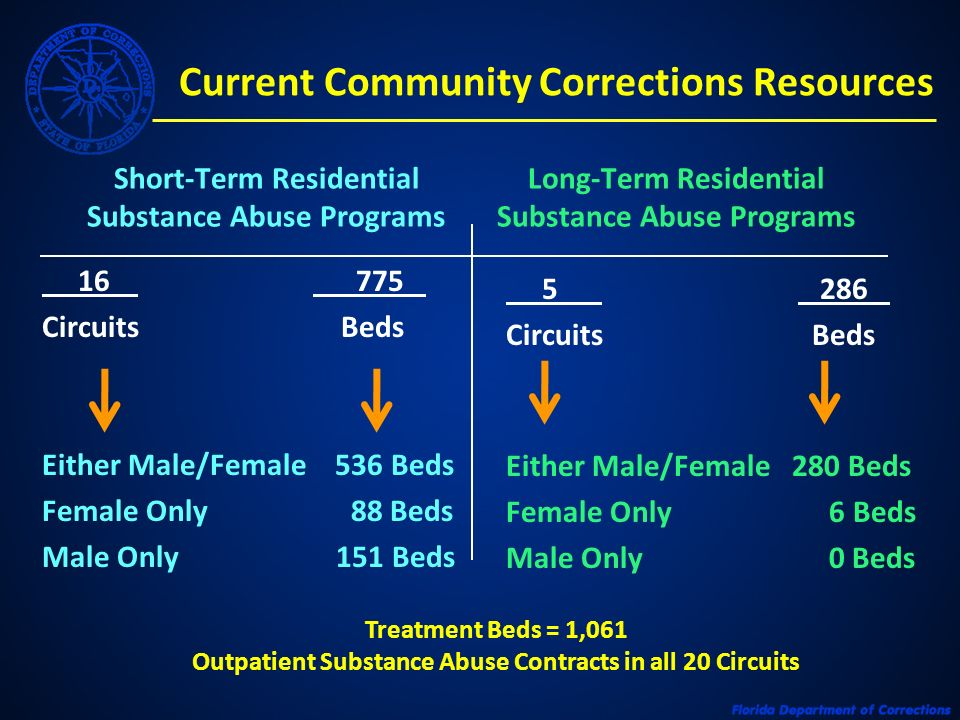 Current Community Corrections Resources Short-Term Residential Substance Abuse Programs Long-Term Residential Substance Abuse Programs 16 775 Circuits