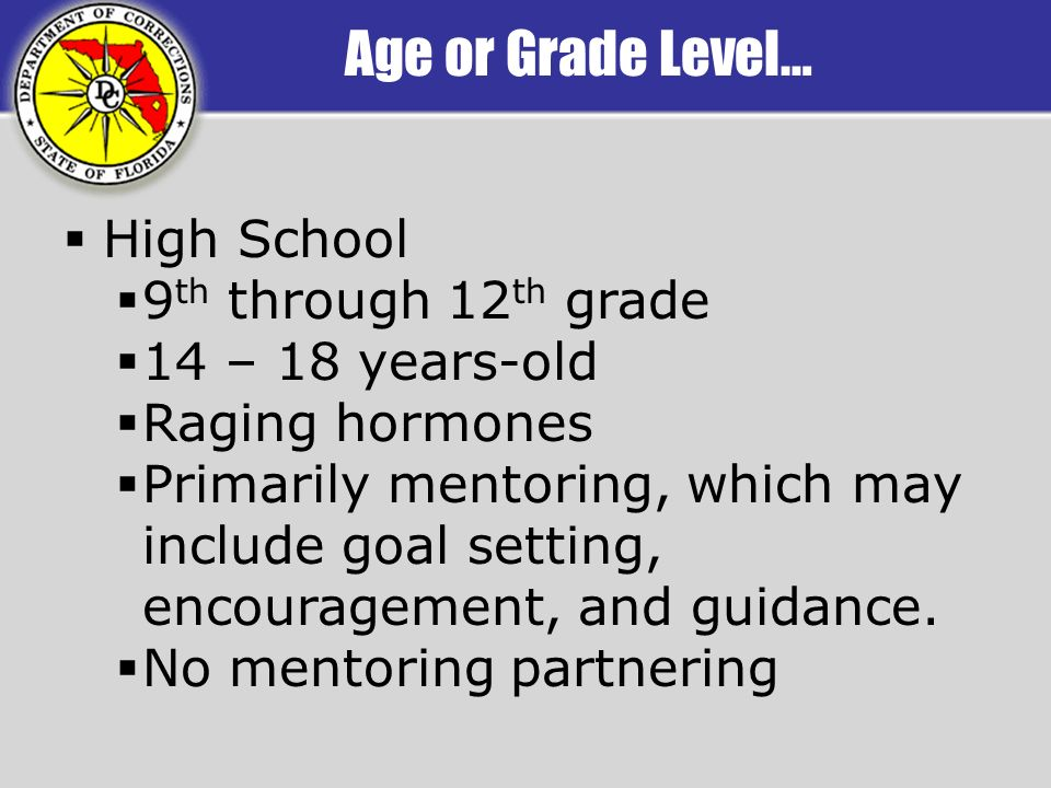 Age or Grade Level… High School 9 th through 12 th grade 14 – 18 years-old Raging hormones Primarily mentoring, which may include goal setting, encouragement, and guidance.