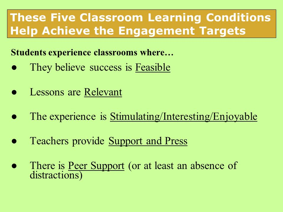 Students experience classrooms where… They believe success is Feasible Lessons are Relevant The experience is Stimulating/Interesting/Enjoyable Teache