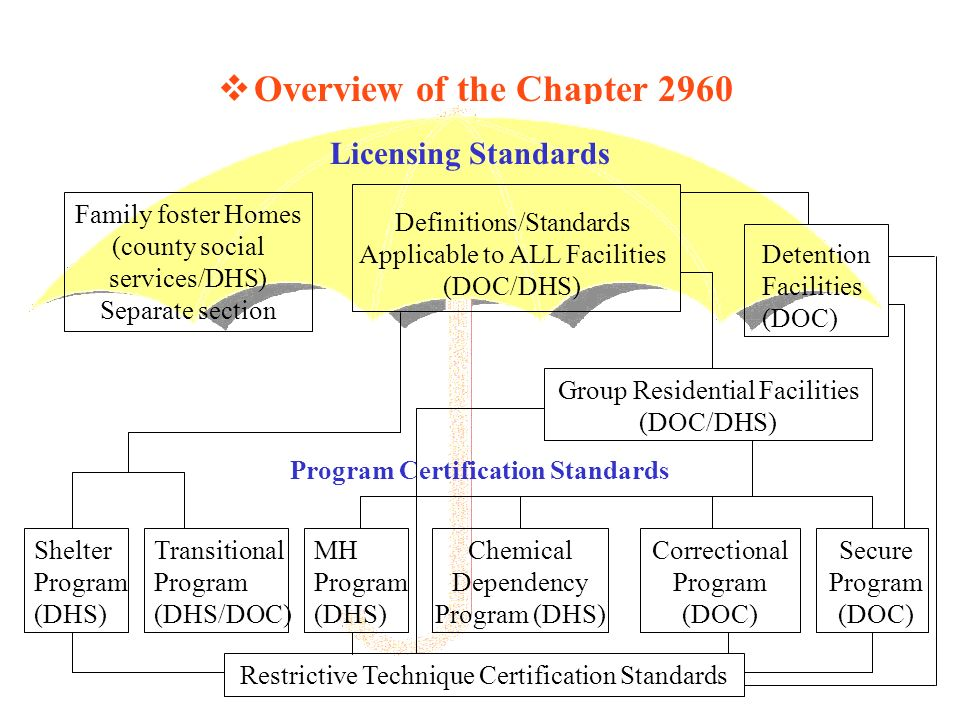 Overview of the Chapter 2960 Licensing Standards Shelter Program (DHS) Program Certification Standards Definitions/Standards Applicable to ALL Facilities (DOC/DHS) Family foster Homes (county social services/DHS) Separate section Transitional Program (DHS/DOC) Correctional Program (DOC) Chemical Dependency Program (DHS) MH Program (DHS) Detention Facilities (DOC) Group Residential Facilities (DOC/DHS) Secure Program (DOC) Restrictive Technique Certification Standards