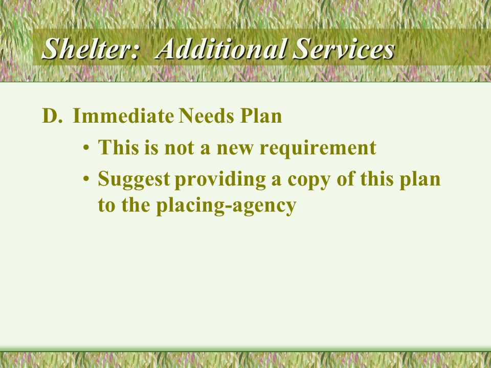 Shelter: Additional Services D.Immediate Needs Plan This is not a new requirement Suggest providing a copy of this plan to the placing-agency