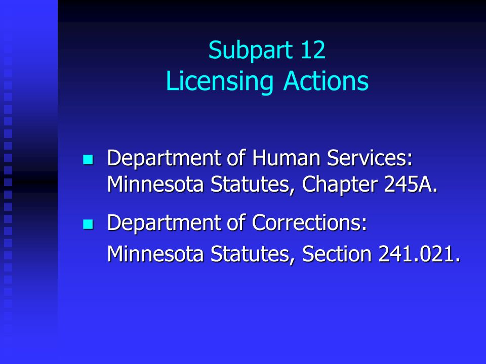 Subpart 12 Licensing Actions Department of Human Services: Minnesota Statutes, Chapter 245A. Department of Human Services: Minnesota Statutes, Chapter