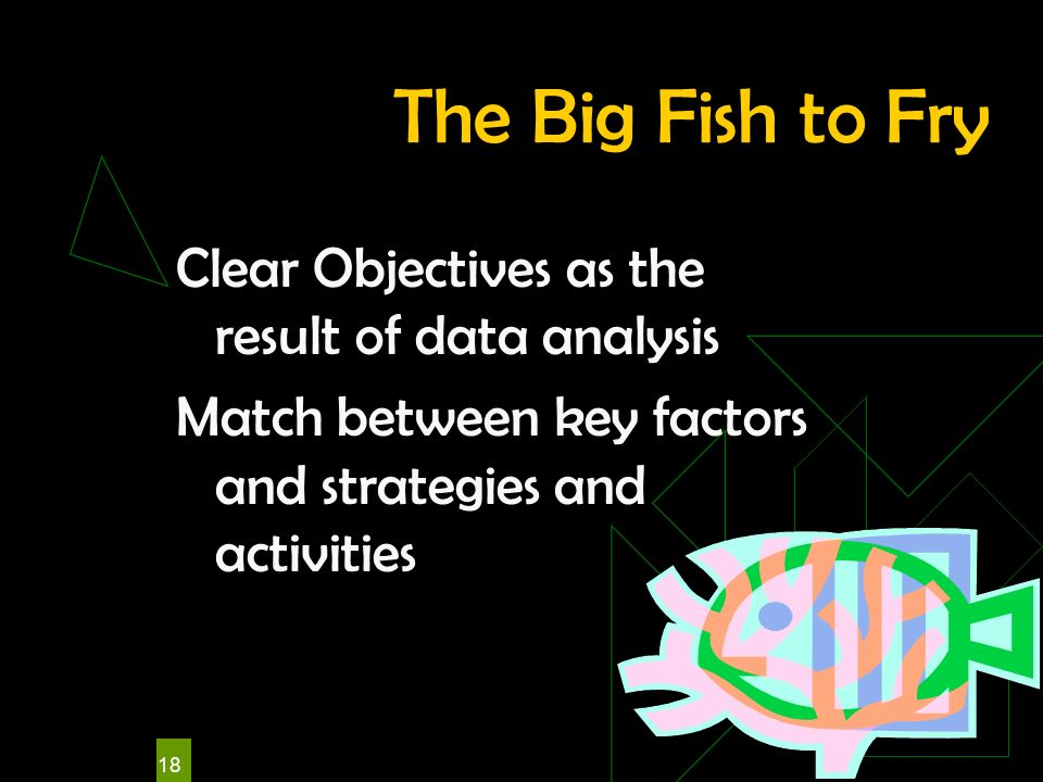 18 The Big Fish to Fry Clear Objectives as the result of data analysis Match between key factors and strategies and activities