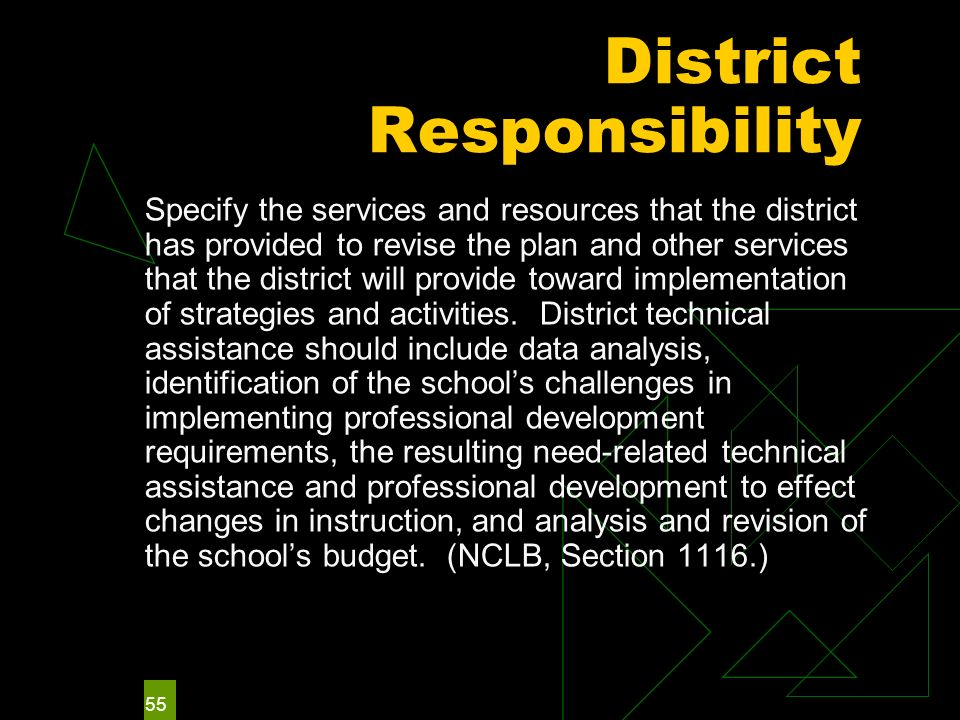 55 District Responsibility Specify the services and resources that the district has provided to revise the plan and other services that the district will provide toward implementation of strategies and activities.