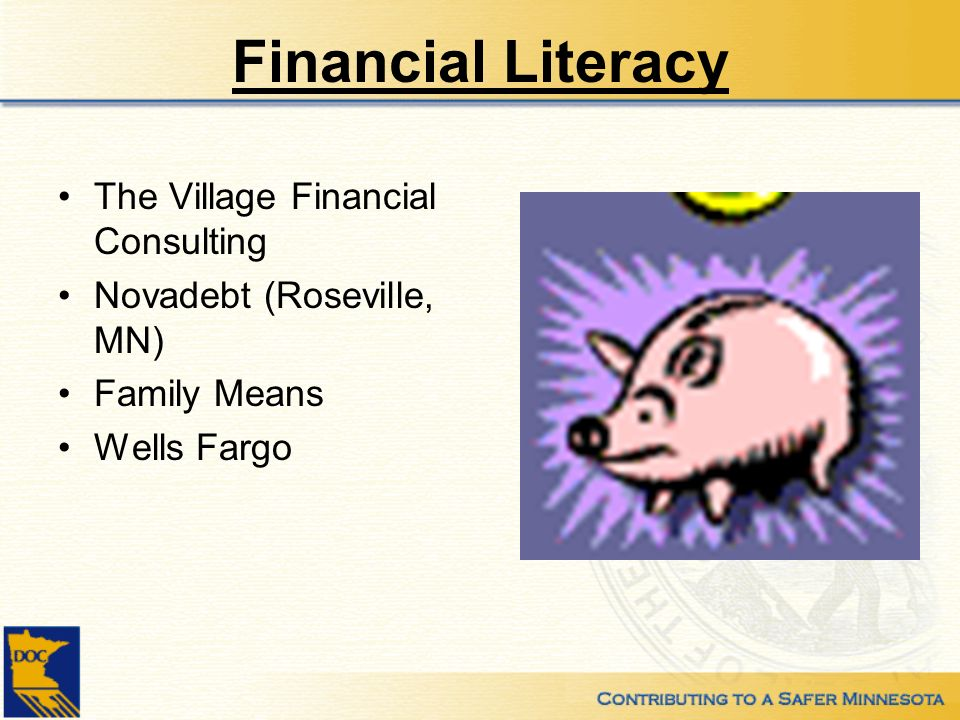 Financial Literacy The Village Financial Consulting Novadebt (Roseville, MN) Family Means Wells Fargo