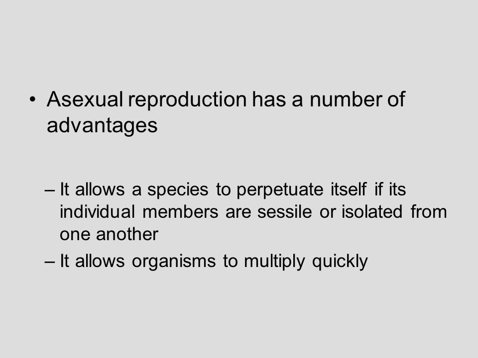 Asexual reproduction has a number of advantages –It allows a species to perpetuate itself if its individual members are sessile or isolated from one a