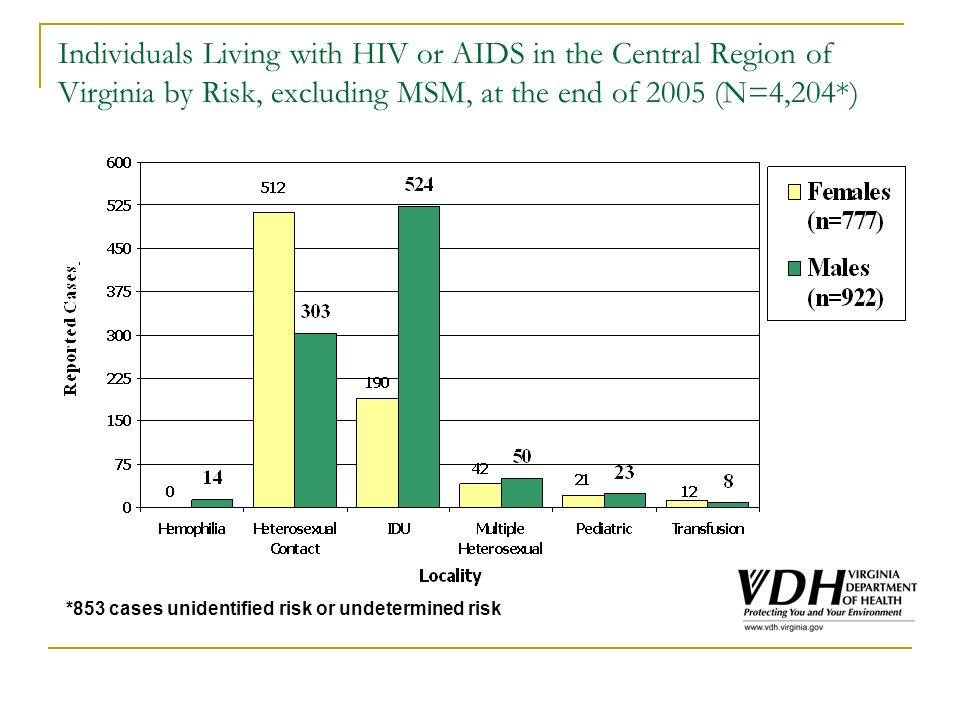 Individuals Living with HIV or AIDS in the Central Region of Virginia by Risk, excluding MSM, at the end of 2005 (N=4,204*) *853 cases unidentified risk or undetermined risk
