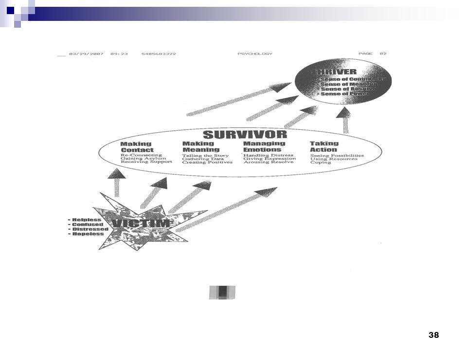 37 Steps in Crisis Intervention Crisis intervention typically involves five components: Promoting safety and security (e.g., finding the survivor a co