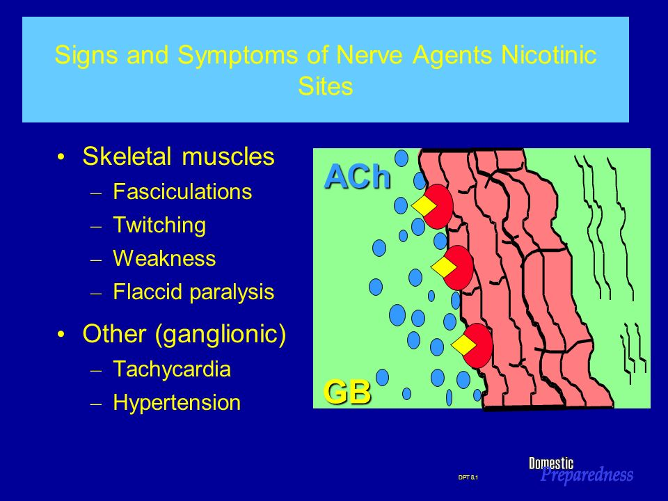 DPT 8.1 Signs and Symptoms of Nerve Agents Nicotinic Sites Skeletal muscles – Fasciculations – Twitching – Weakness – Flaccid paralysis Other (ganglio