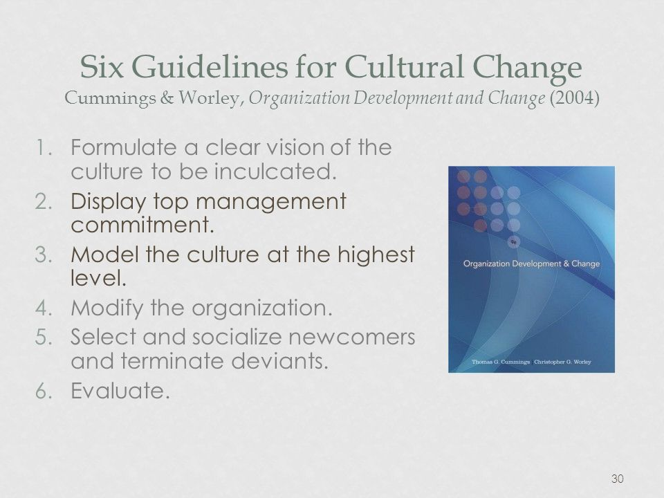 30 Six Guidelines for Cultural Change Cummings & Worley, Organization Development and Change (2004) 1.Formulate a clear vision of the culture to be inculcated.