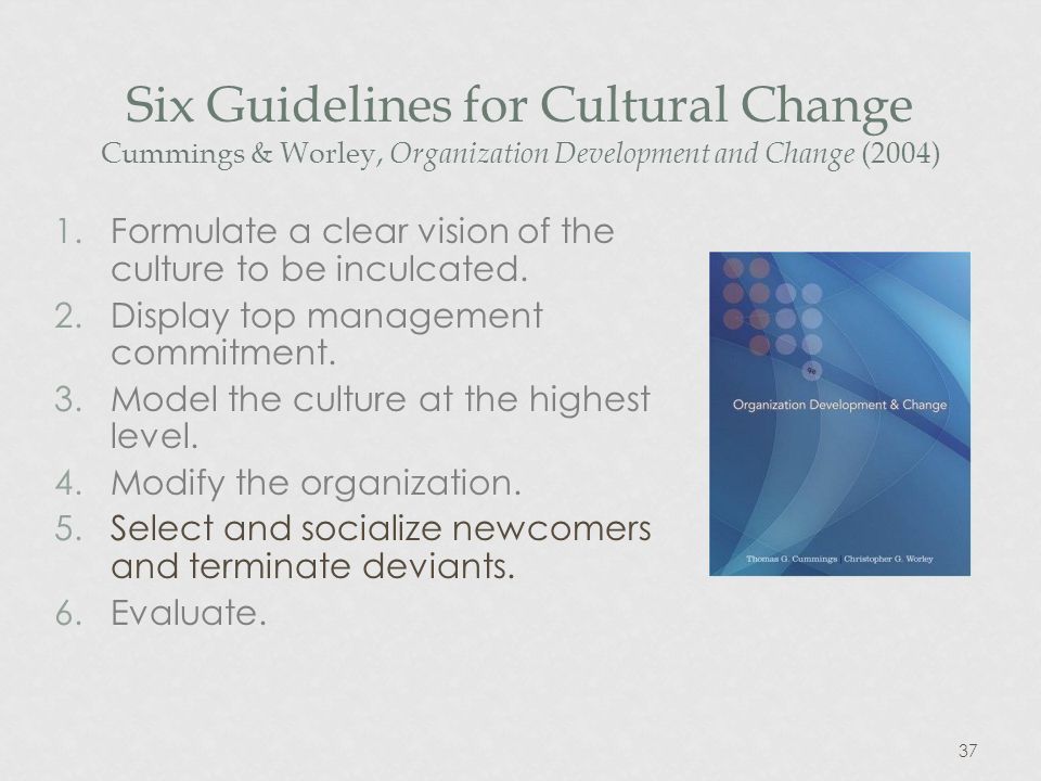 37 Six Guidelines for Cultural Change Cummings & Worley, Organization Development and Change (2004) 1.Formulate a clear vision of the culture to be inculcated.