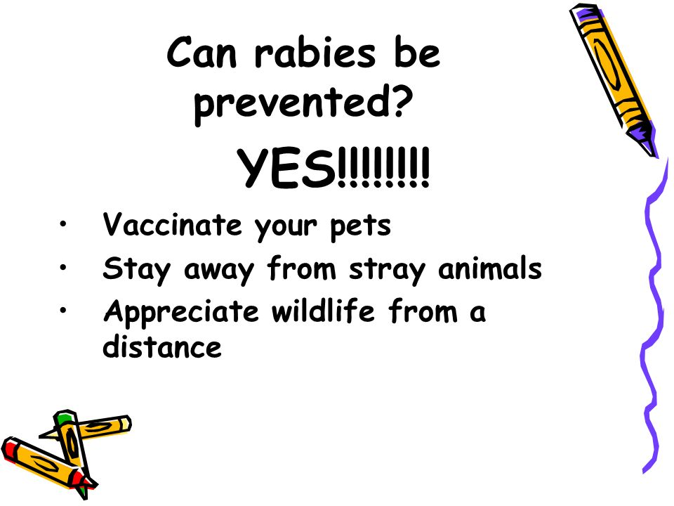 Can rabies be prevented. YES!!!!!!!.