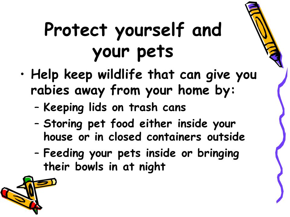 Protect yourself and your pets Help keep wildlife that can give you rabies away from your home by: –Keeping lids on trash cans –Storing pet food either inside your house or in closed containers outside –Feeding your pets inside or bringing their bowls in at night