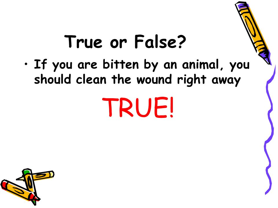 True or False? If you are bitten by an animal, you should clean the wound right away TRUE!