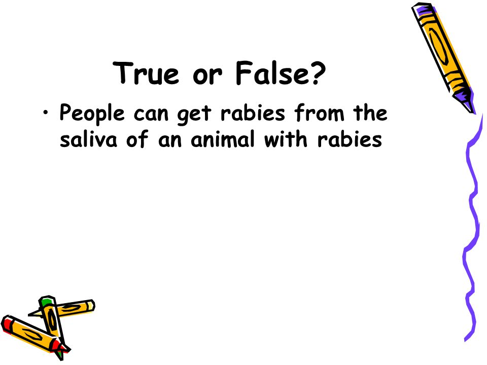 True or False? People can get rabies from the saliva of an animal with rabies