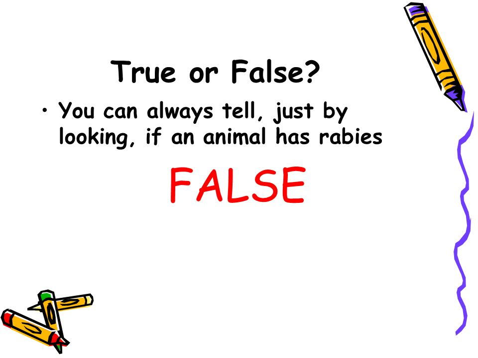 True or False? You can always tell, just by looking, if an animal has rabies FALSE