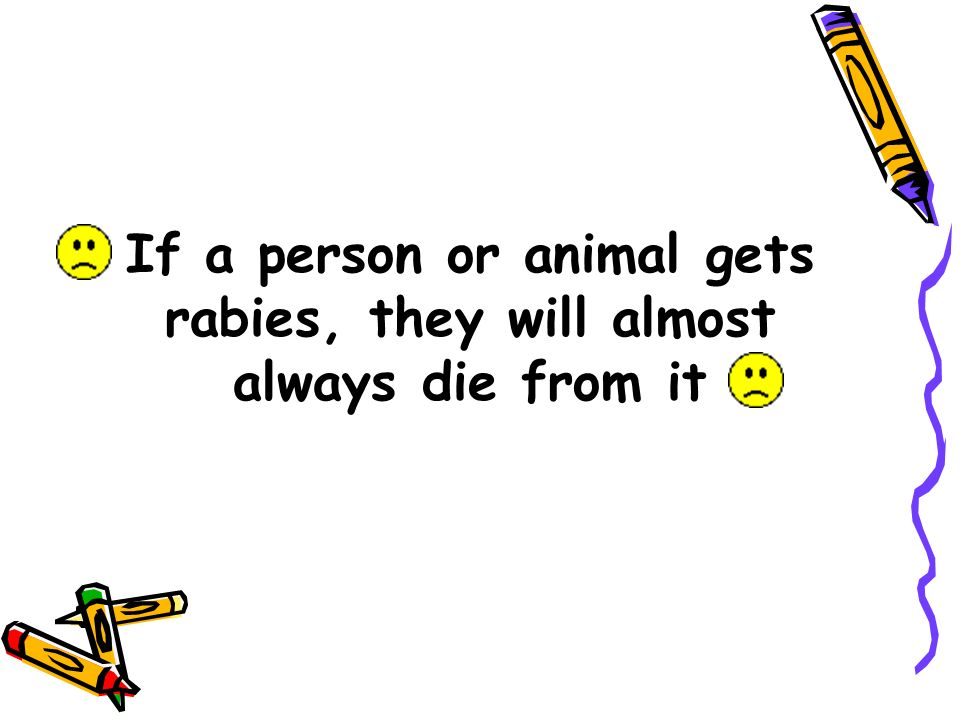 If a person or animal gets rabies, they will almost always die from it