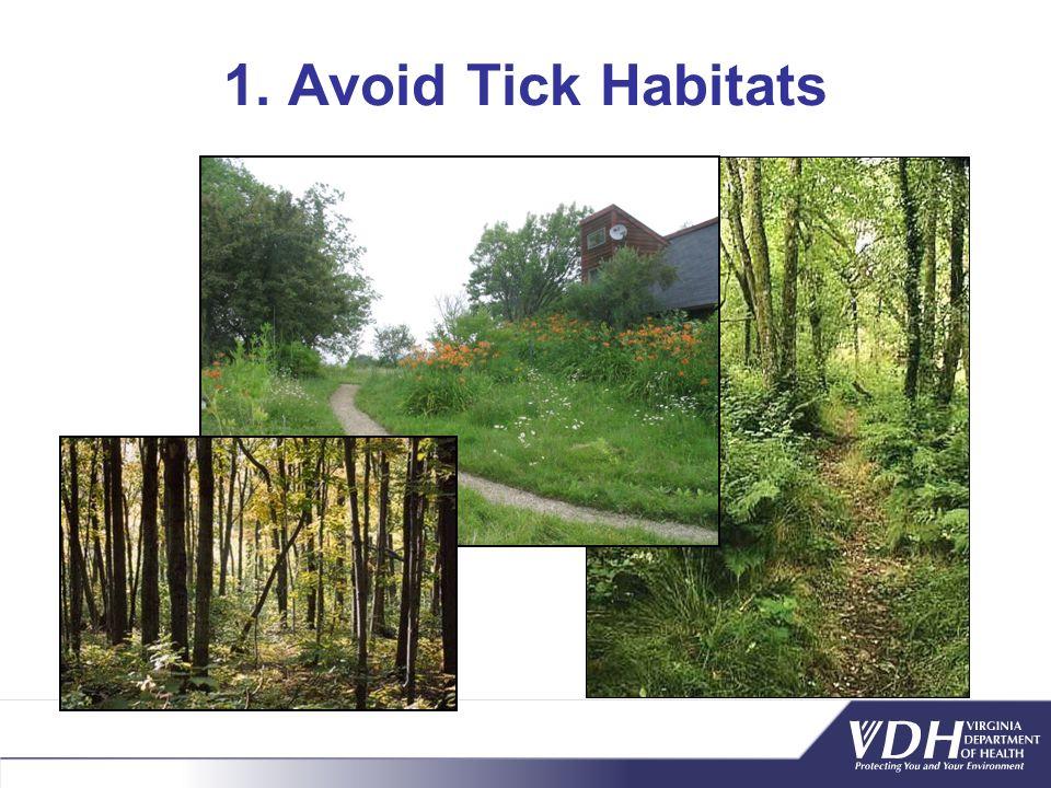 1. Avoid Tick Habitats