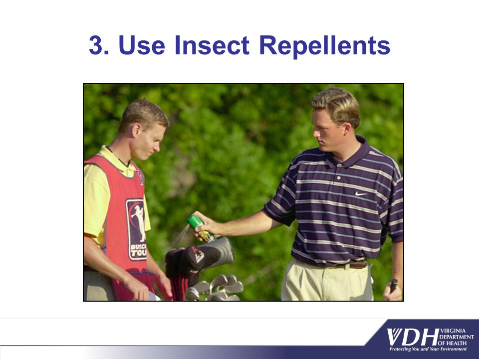 3. Use Insect Repellents