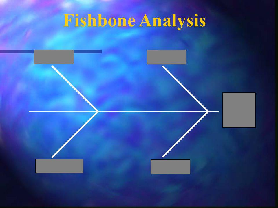 Fishbone Analysis