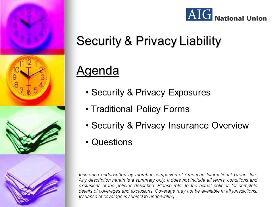 Security & Privacy Liability Nick Economidis Vice President Professional Liability Division AIG/National Union Insurance underwritten by member companies of American International Group, Inc.