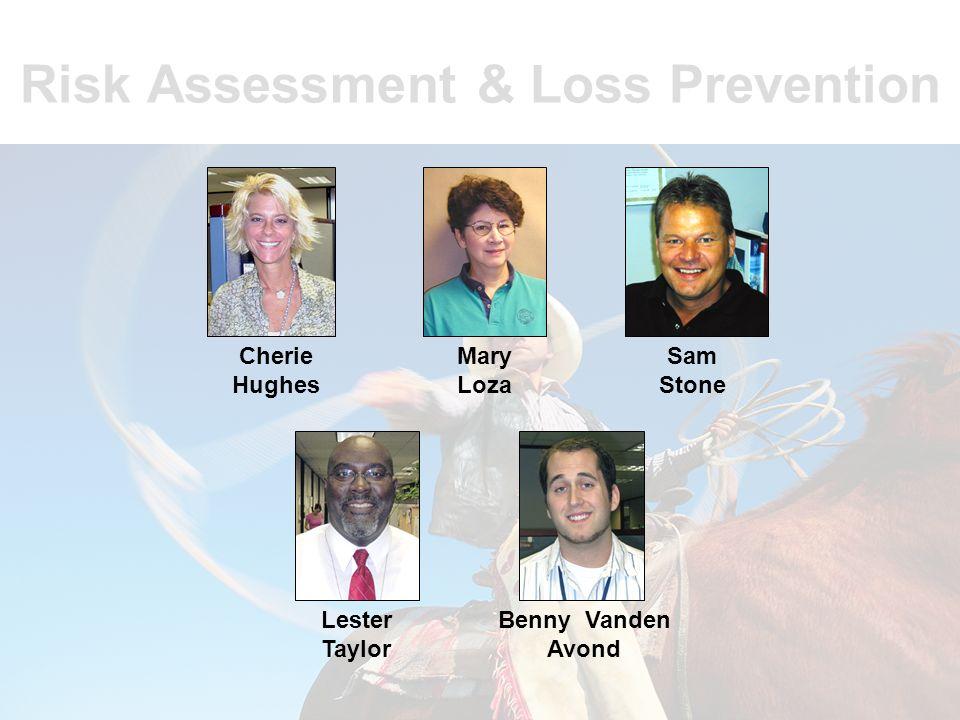 Risk Assessment & Loss Prevention Mike Hay Sam Arant Sally Becker Lisa Bell Joe Deering