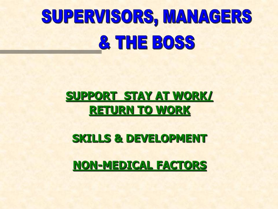 SUPPORT STAY AT WORK/ RETURN TO WORK SKILLS & DEVELOPMENT NON-MEDICAL FACTORS SUPPORT STAY AT WORK/ RETURN TO WORK SKILLS & DEVELOPMENT NON-MEDICAL FACTORS