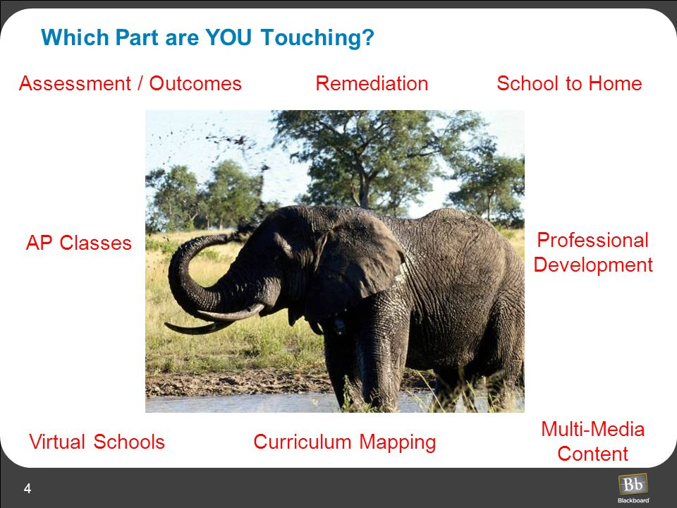 4 Which Part are YOU Touching? Virtual Schools Professional Development AP Classes School to Home Multi-Media Content Assessment / Outcomes Curriculum