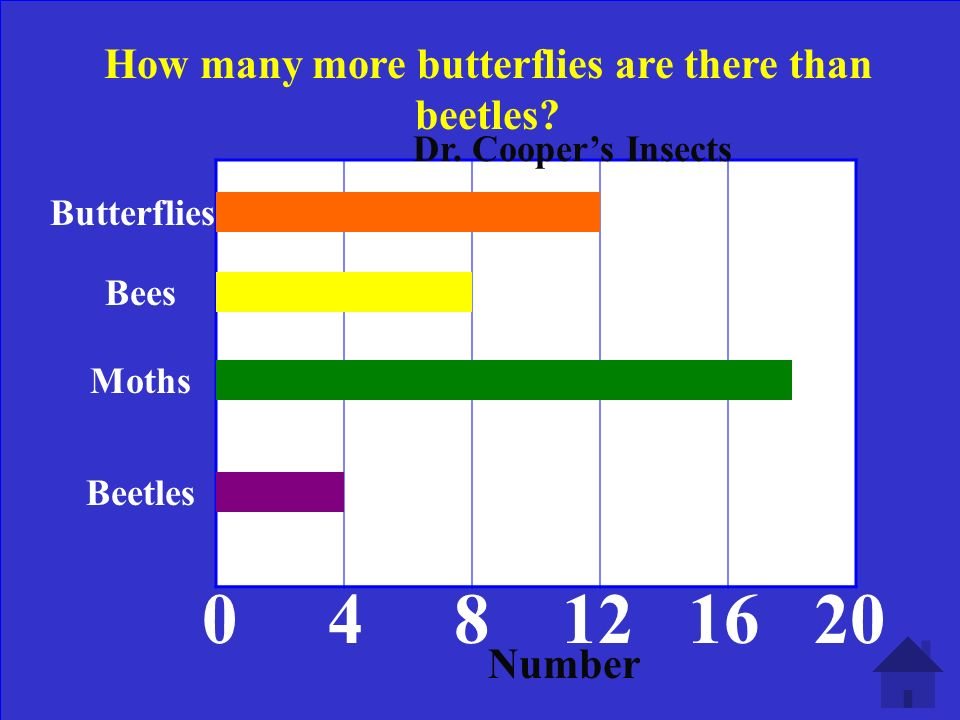 Butterflies Bees Moths Beetles 0 4 8 12 16 20 Dr. Coopers Insects How many moths are there Number