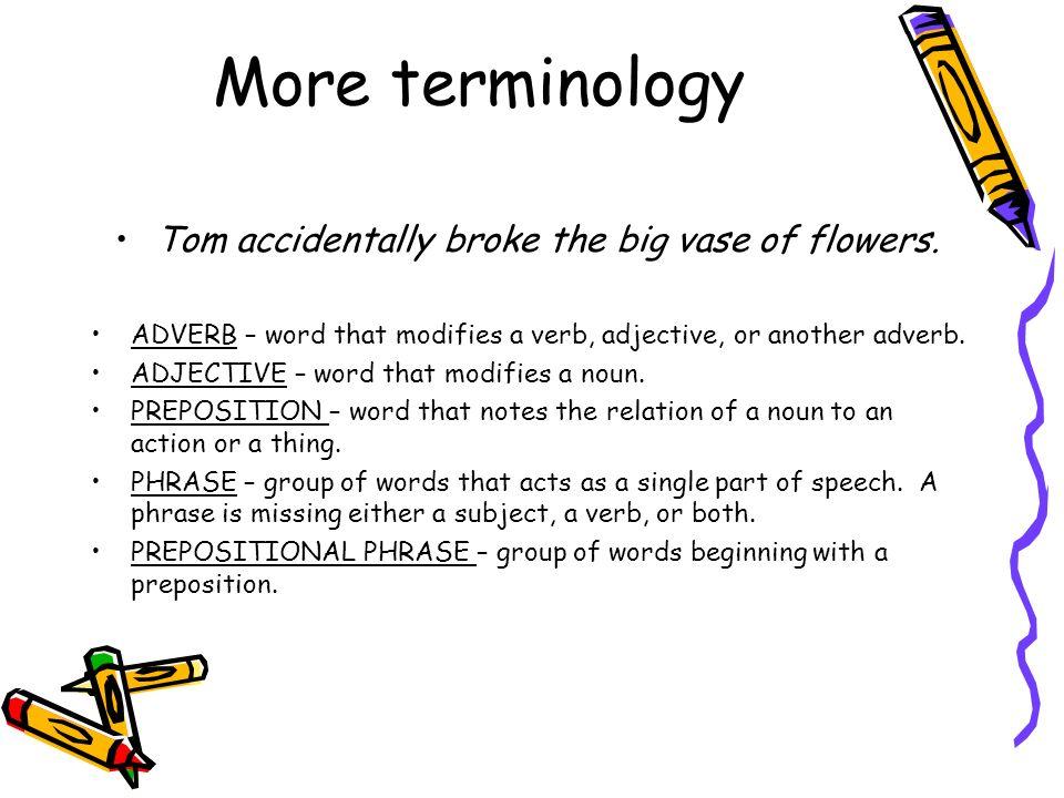 Tom accidentally broke the big vase of flowers.
