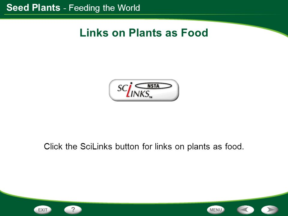 Seed Plants Links on Plants as Food Click the SciLinks button for links on plants as food. - Feeding the World