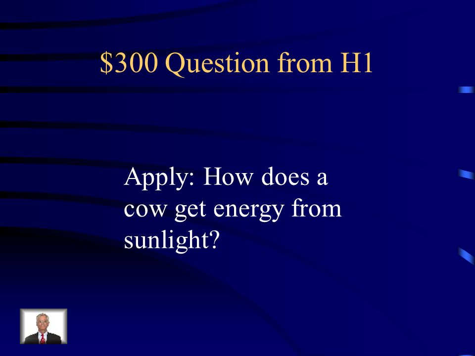 $200 Answer from H1 You could not do your work.