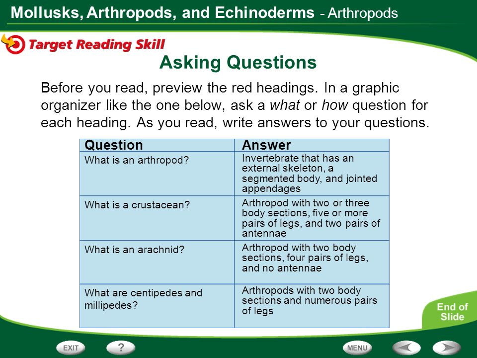 Mollusks, Arthropods, and Echinoderms Asking Questions Before you read, preview the red headings. In a graphic organizer like the one below, ask a wha